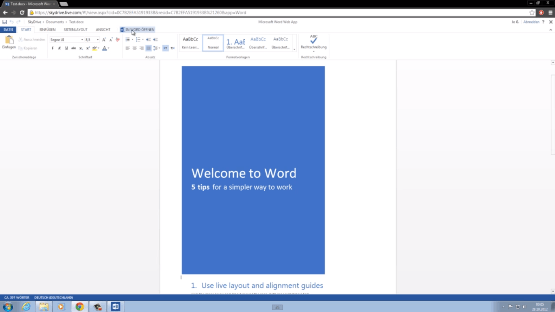 SkyDrive Word Web App