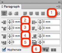 Absatzformatierung in Adobe InDesign – Video