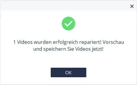 Erfolgsmeldung Video Reparatur